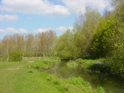 Hawley Meadows