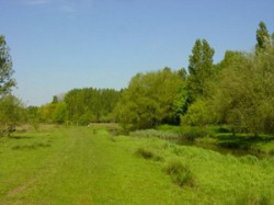 Hawley Meadows 01